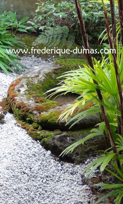 niwaki taille japonaise jardin japonais frederique dumas voyage d'etudes au japon tsuboniwa jardin shizen no sei hortitherapie niwatherapie