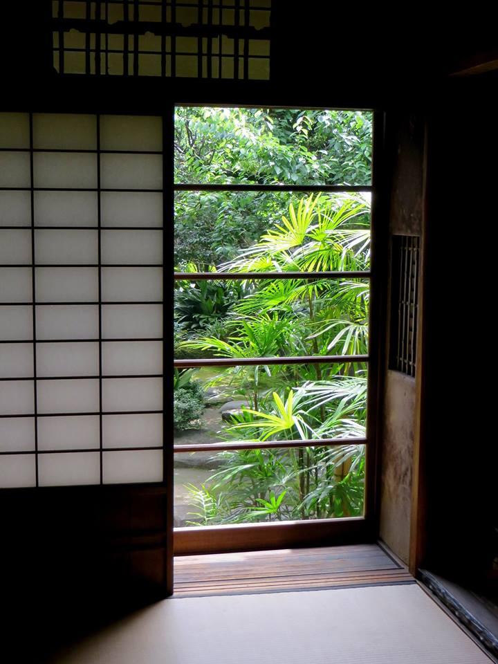 Stages taille japonaise et création de jardins japonais - Frederique Dumas www.japanese-garden-institute.com www.frederique-dumas.com
