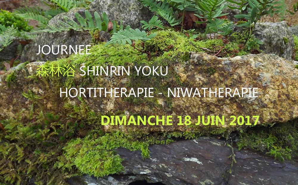 Journée shinrin yoku et niwatherapie© - Frederique Dumas www.japanese-garden-institute.com www.frederique-dumas.com