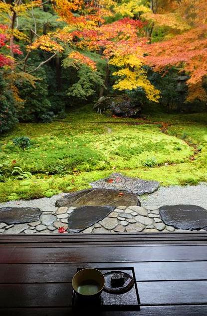 Spiritual Japan Niwaki Tour - voyage d'études au Japon - parcours initiatique - Frederique Dumas www.japanese-garden-institute.com www.frederique-dumas.com
