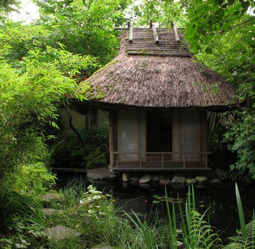 Bains de forêt à la japonaise - shinrin yoku - forêt-thérapie© - Niwatherapie© Frederique Dumas www.japanese-garden-institute.com www.frederique-dumas.com