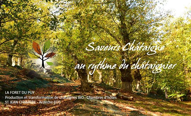 Créer votre activité professionnelle - Frederique Dumas - www.frederique-dumas.com