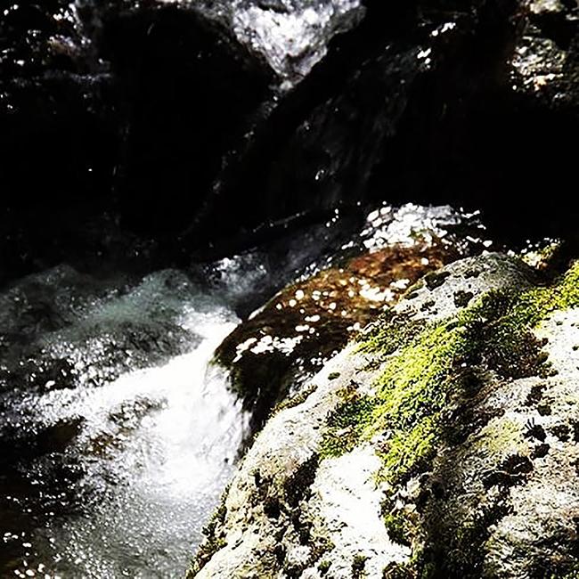 metiers et reconversions professionnelles Nature - Jardins japonais thérapeutiques - Forêt-thérapie©  - Niwathérapie© - Frederique Dumas www.frederique-dumas-landscape.com www.frederique-dumas.com