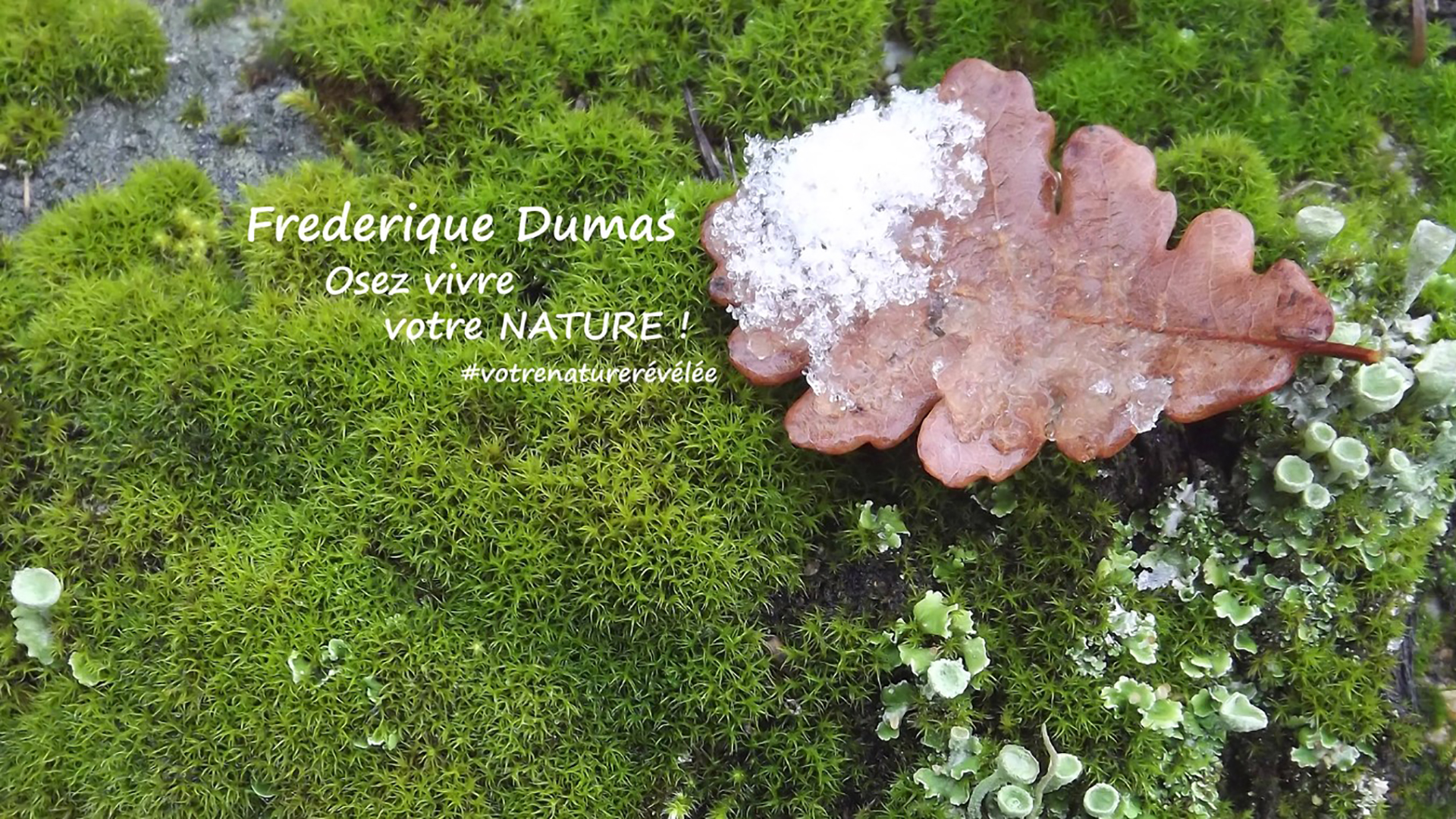 metiers et reconversions professionnelles Nature - Jardins japonais thérapeutiques - Forêt-thérapie© - Shinrin yoku - Niwathérapie© - Frederique Dumas www.frederique-dumas-landscape.com www.frederique-dumas.com